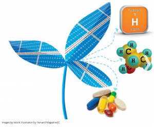 http://harvardmagazine.com/2015/05/the-bionic-leaf